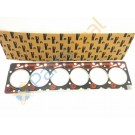 Gasket Cylinder Head- 6 BT- 12V- 3283339