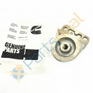 Head Fuel Filter- 6 BT- - 3931892
