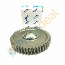 1st Gear M/S- 4304545