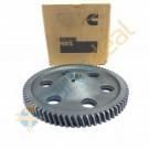 Gear Fuel Pump- 6 BT- 12V for Inline FIP- 5284293/3934636